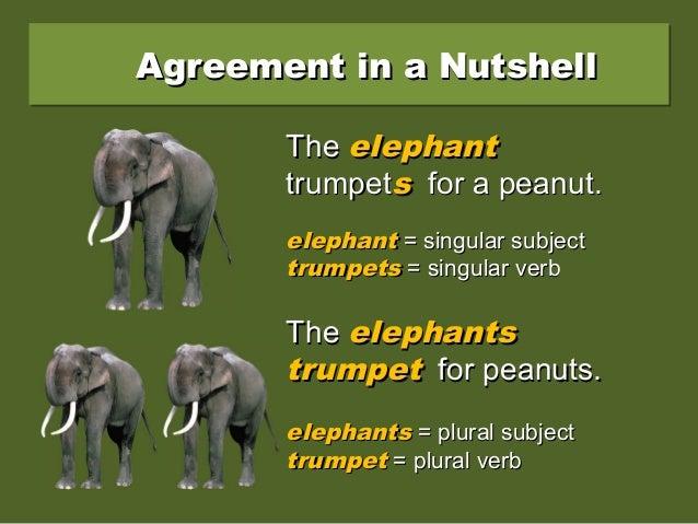 Agreement in a NutshellAgreement in a NutshellAgreement in a NutshellAgreement in a Nutshell TheThe elephantelephant trump...