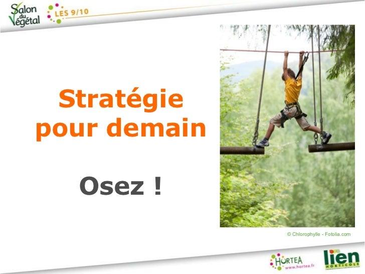 Stratégiepour demain  Osez !              © Chlorophylle - Fotolia.com