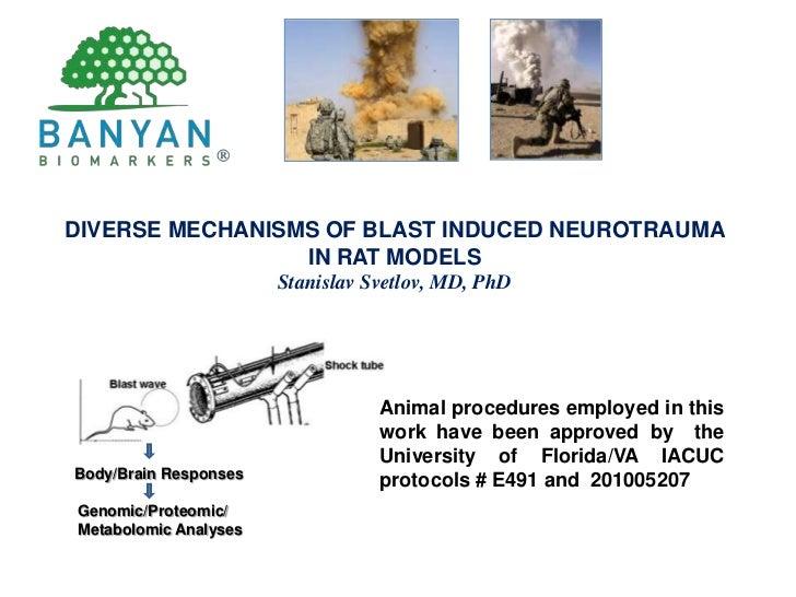 DIVERSE MECHANISMS OF BLAST INDUCED NEUROTRAUMA <br />IN RAT MODELS<br />Stanislav Svetlov, MD, PhD<br />Animal procedures...