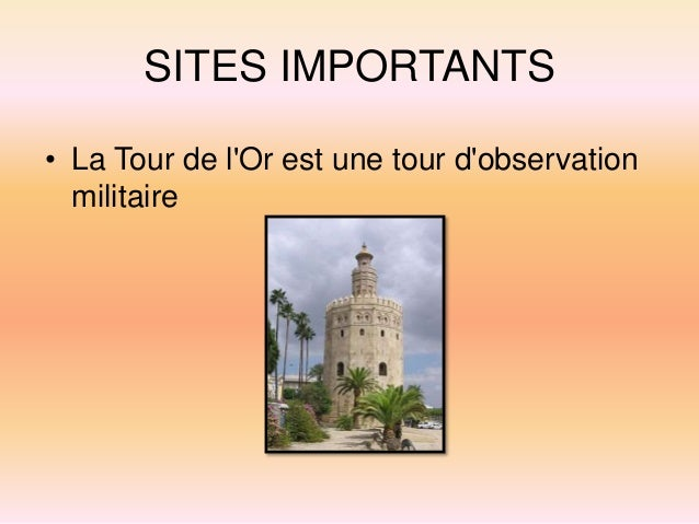SITES IMPORTANTS • La cathédrale de Séville est le bâtiment religieux le plus important de toute la ville de Séville.
