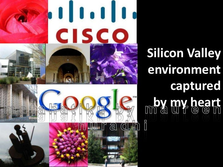Silicon Valleyenvironment     captured by my heart