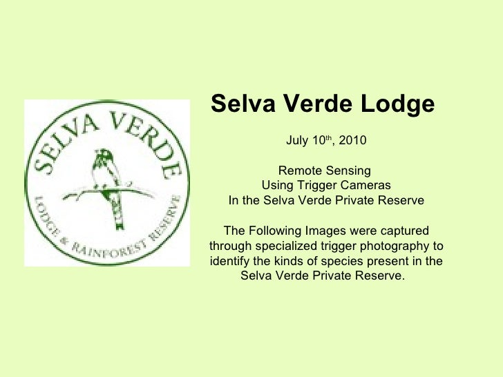 Selva Verde Lodge  July 10 th , 2010 Remote Sensing  Using Trigger Cameras In the Selva Verde Private Reserve The Followin...