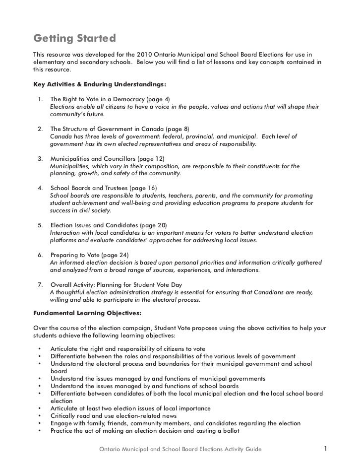 essay about 2010 election