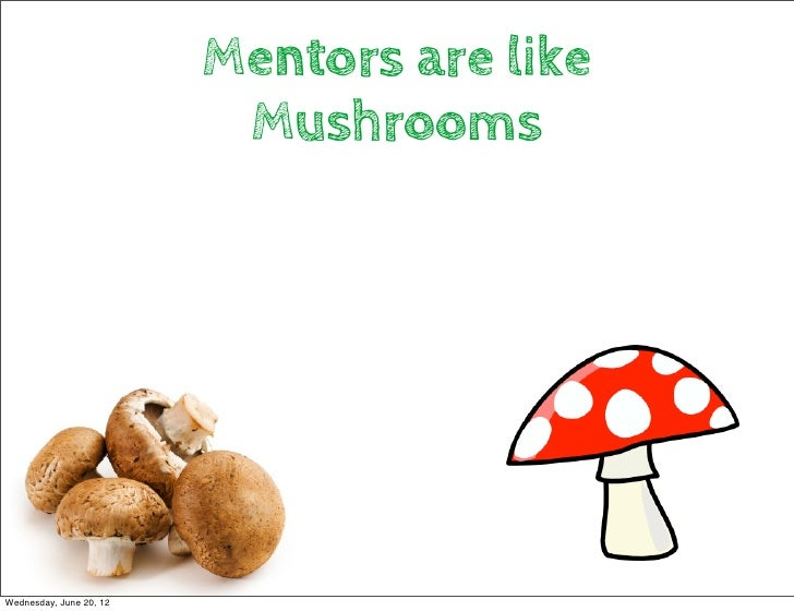 Mentors are like                          MushroomsWednesday, June 20, 12
