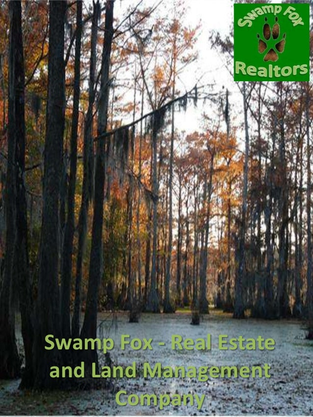 Swamp Fox - Real Estateand Land Management      Company