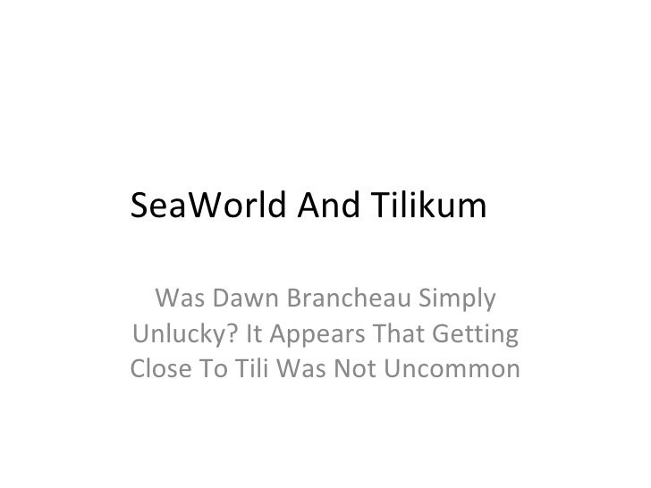 SeaWorld And Tilikum Was Dawn Brancheau Simply Unlucky? It Appears That Getting Close To Tili Was Not Uncommon