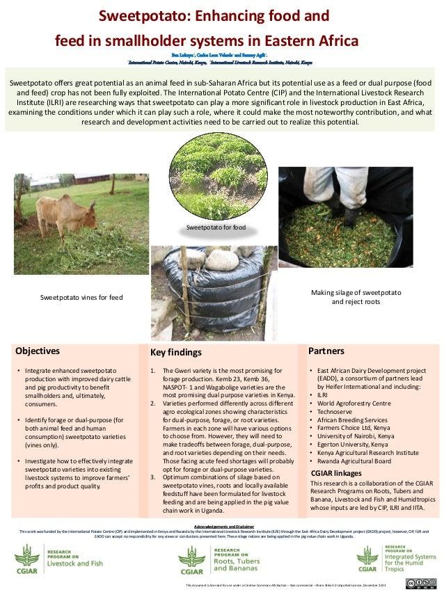 Sweetpotato: Enhancing food and feed in smallholder systems in Eastern Africa Ben Lukuyu2, Carlos Leon Velarde1 and Sammy ...