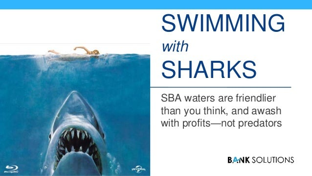 SWIMMING with SHARKS SBA waters are friendlier than you think, and awash with profits—not predators