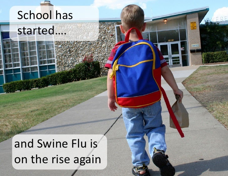 essay on swine flu 2009
