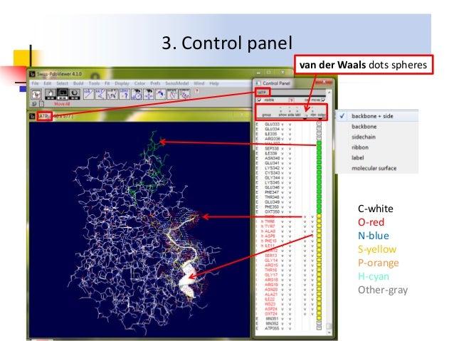 Swiss-PdbViewer Introduction-Wenwen Wang