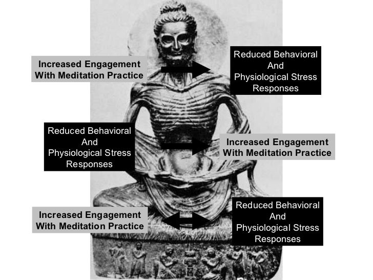 in response to meditation xvii In this clip (pt 3 of 8), dr harrington addresses claim 2, meditation reduces stress and enhances health this clip is part of a lecture by anne harrington, phd, professor for the history of.