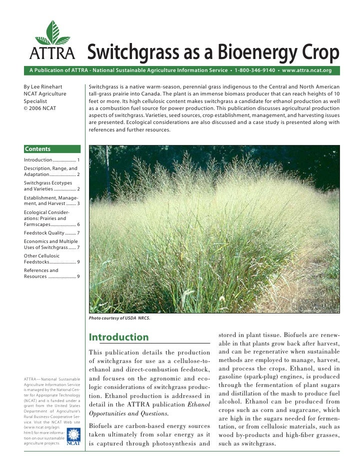 ATTRA                                Switchgrass as a Bioenergy Crop   A Publication of ATTRA - National Sustainable Agric...