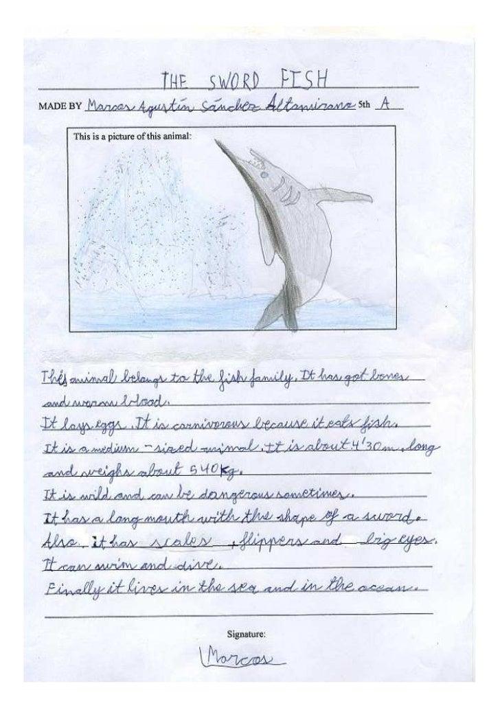 Swordfishmarcosa.