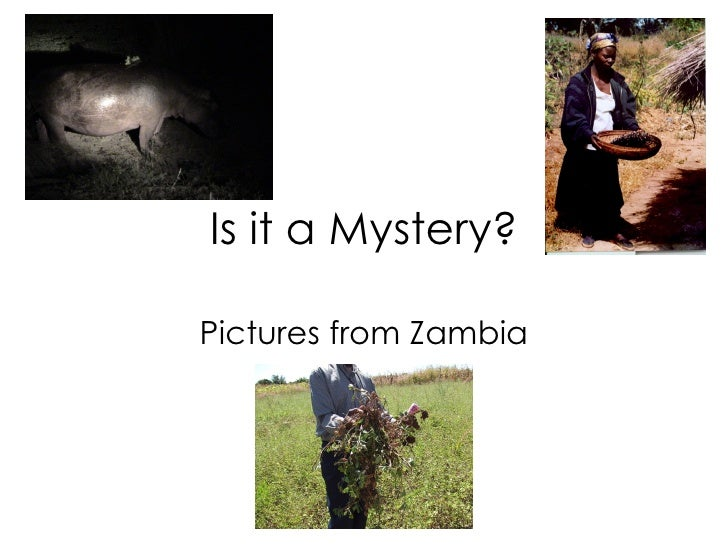 Is it a Mystery? Pictures from Zambia