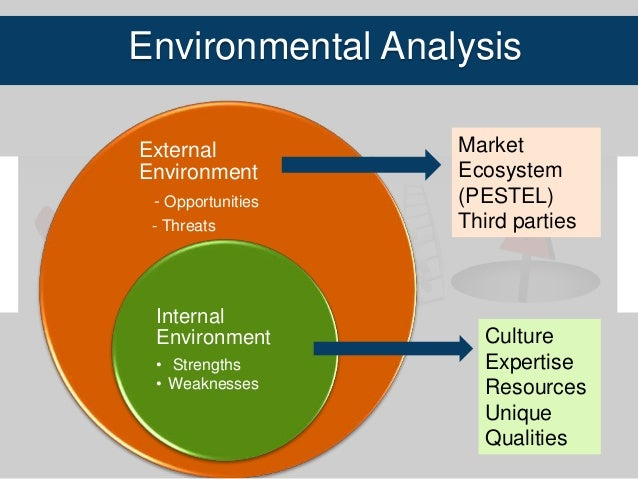 external and internal environmental analysis 2 essay The firm's understanding of the external environment is matched with knowledge about its internal environment to form its vision, to develop its mission, and to take strategic actions that result in strategic competitiveness and above-average returns.