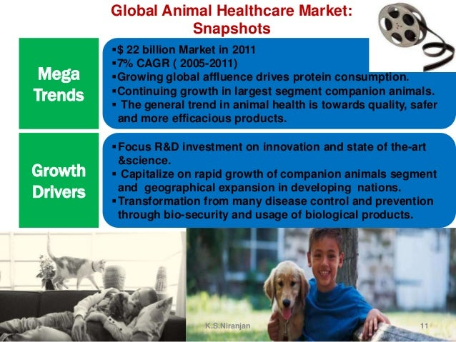an introduction to the analysis of the pfizer animal health products Pfizer strategy for internationalization and some financial analysis pfizer strategy for internationalization and some financial analysis  pfizer animal health.