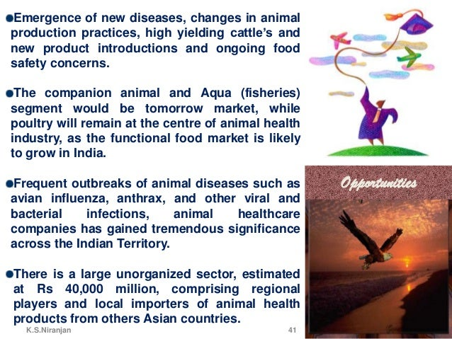pets com swot analysis Click to add text swot analysis principle of marketing ahmad idrees  to  understand swot, we will perform swot analysis of a large pet.