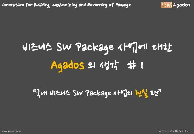 """Innovation for Building, Customizing and Governing of Package  비즈니스 SW Package 사업에 대한 Agados 의 생각 # 1 """"국내 비즈니스 SW Package ..."""