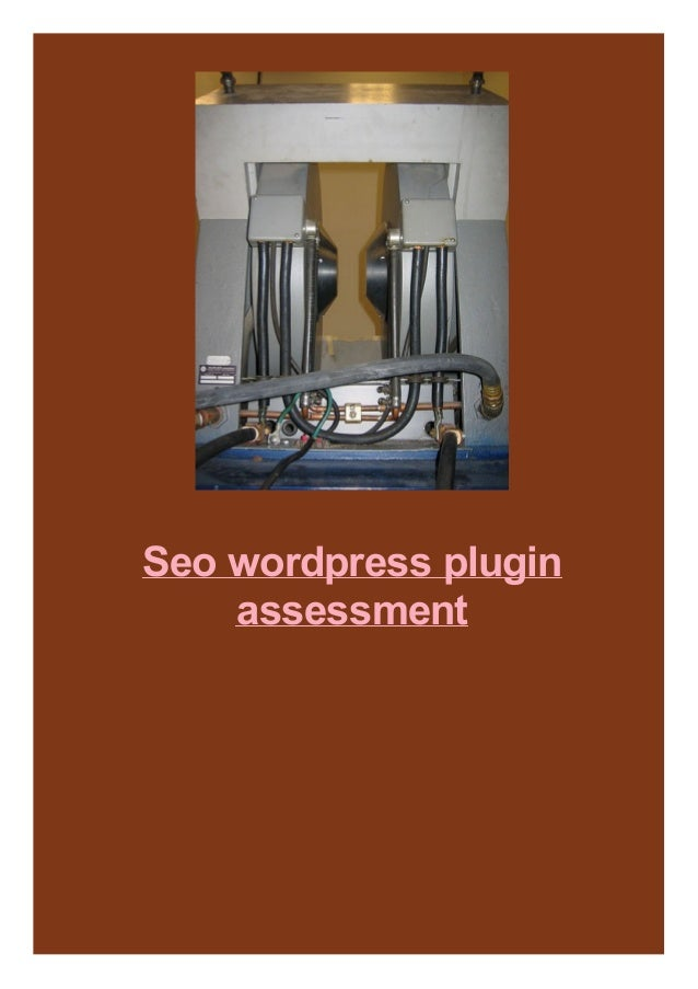 Seo wordpress plugin assessment