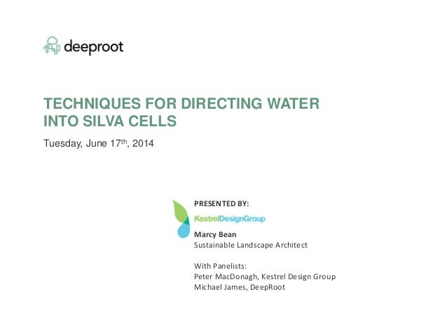 TECHNIQUES FOR DIRECTING WATER INTO SILVA CELLS Tuesday, June 17th, 2014 PRESENTED BY: Marcy Bean Sustainable Landscape Ar...