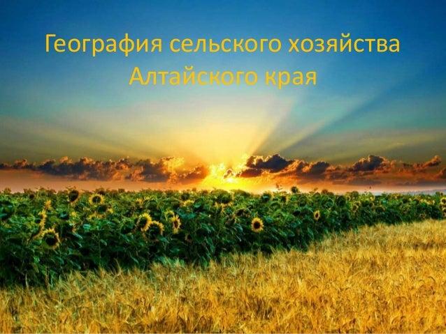 География сельского хозяйства Алтайского края
