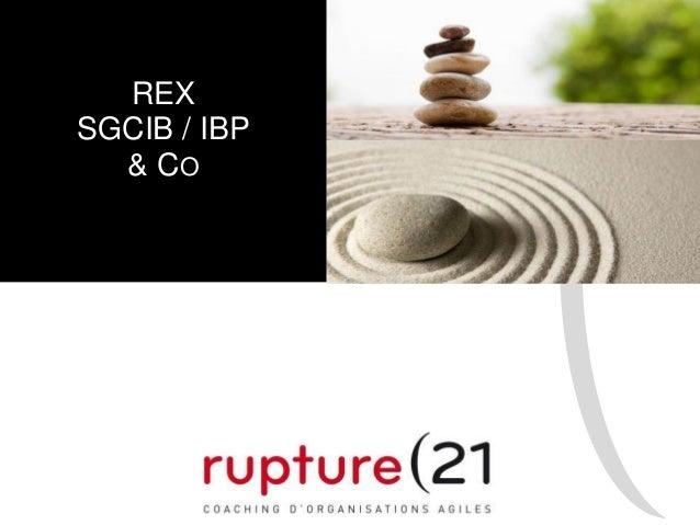 REX SGCIB / IBP & CO