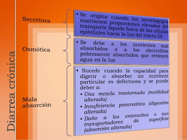 especificas de diarrea          importantes18