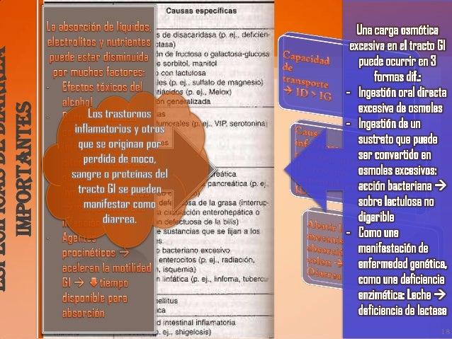 Patología y patogénesis19