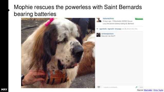 Mophie rescues the powerless with Saint Bernards bearing batteries Source: Mashable / Chris Taylor