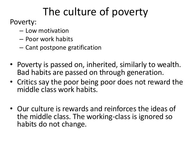 sy inequality sociology 11 functionalism