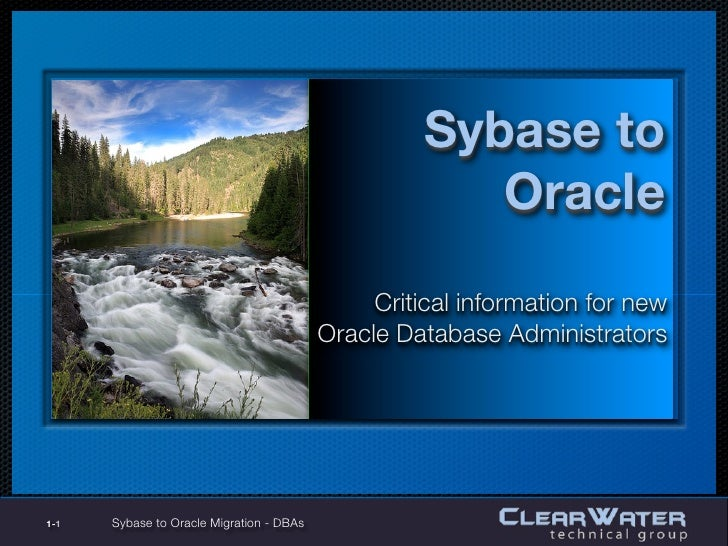 Sybase to                                                        Oracle                                                Cri...