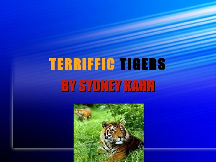 TERRIFFIC  TIGERS BY SYDNEY KAHN