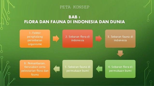 Geografi Flora Dan Fauna Di Indonesia Dan Dunia