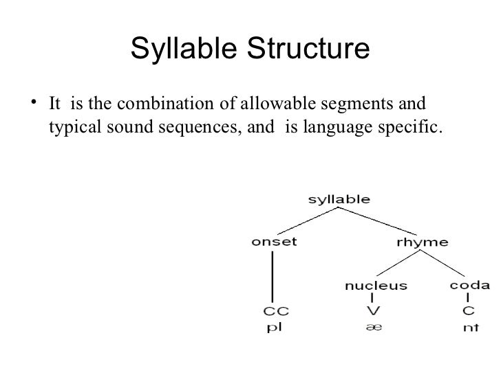 Tree Diagram Syllable Structure - Basic Guide Wiring Diagram •