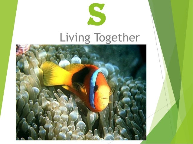 S  Living Together