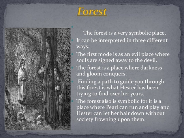 What is the symbolism of the forest?