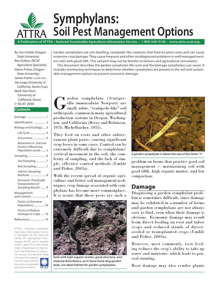 Symphylans:  ATTRA Soil Pest Management Options   A Publication of ATTRA - National Sustainable Agriculture Information Se...