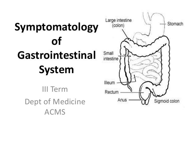 symptomatology of gastrointestinal system iii term dept of medicine acms