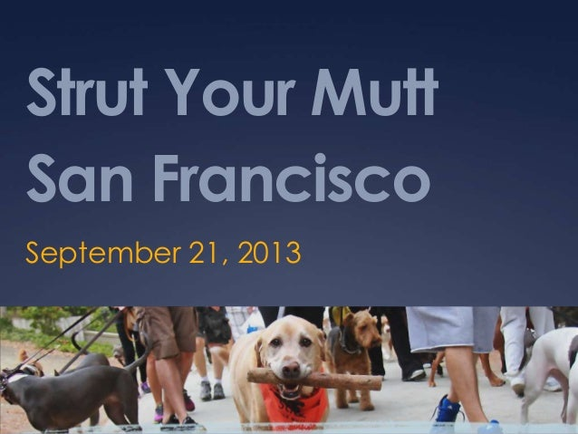 Strut Your Mutt San Francisco September 21, 2013