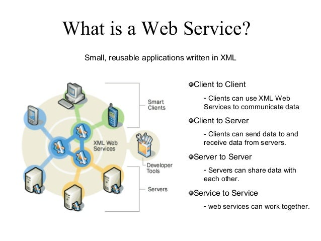 WEB SERVICES IN DOT NET PDF