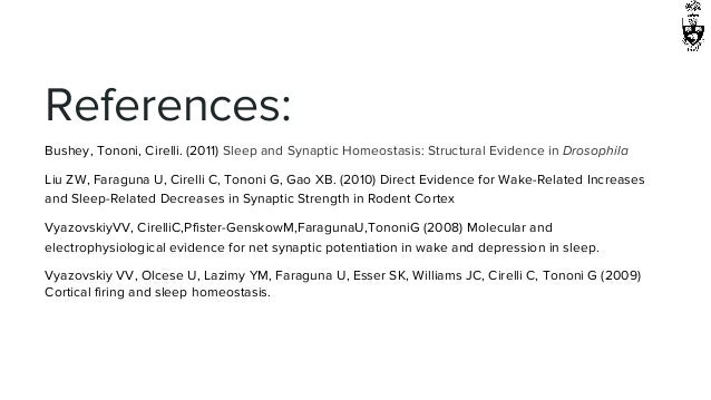 Describe and evaluate the synaptic homeostasis