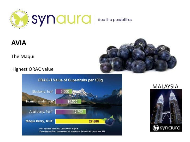 Welcome to a new opportunity called Synaura<br /><ul><li>First to market the Maqui Berry