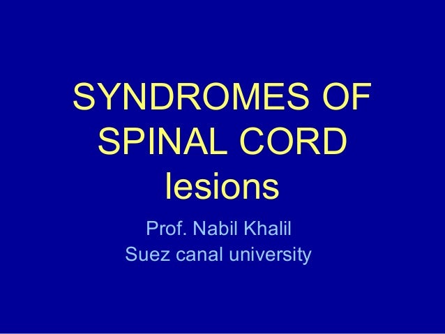 SYNDROMES OF SPINAL CORD lesions Prof. Nabil Khalil Suez canal university