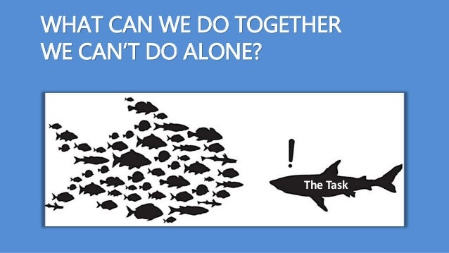 WHAT CAN WE DO TOGETHER WE CAN'T DO ALONE? The Task