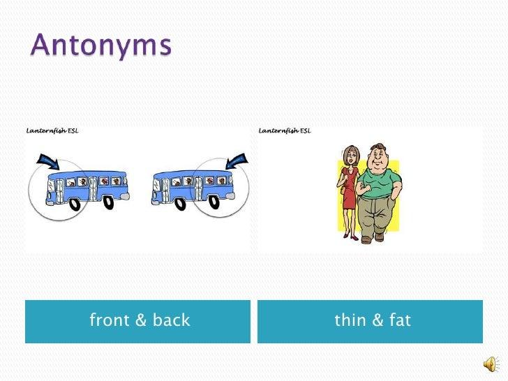 Synonyms & Antonyms, A Grammar Mini-Lesson