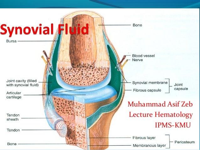 Muhammad Asif Zeb Lecture Hematology IPMS-KMU