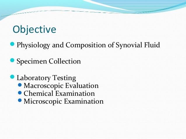 Synovial fluid Slide 2
