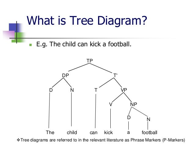 Syntactic relations 7 what is tree diagram ccuart Images