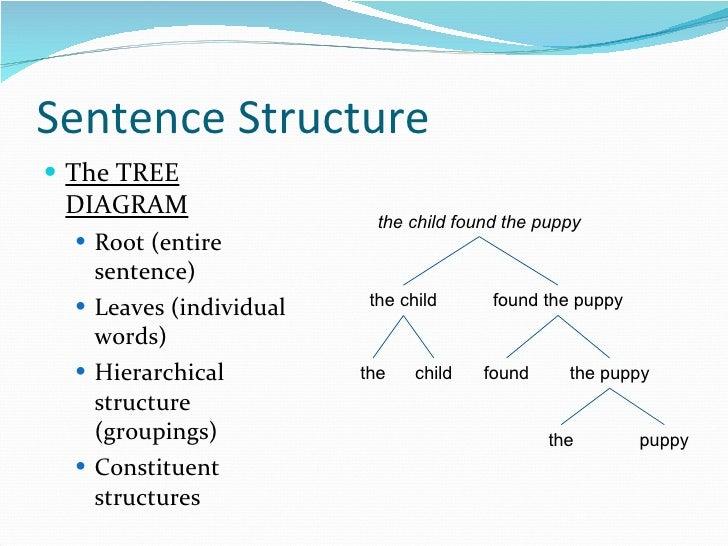 Sentence Structure <ul><li>The TREE DIAGRAM </li></ul><ul><ul><li>Root (entire sentence) </li></ul></ul><ul><ul><li>Leaves...