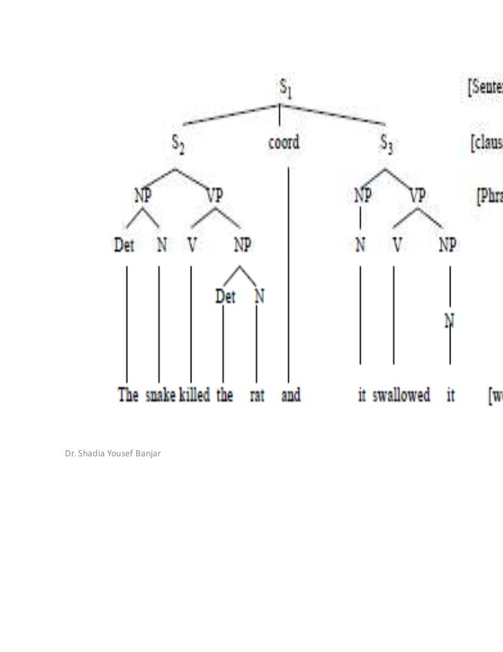 Syntax & syntactic analysis,lec.1, dr. shadia.ppt